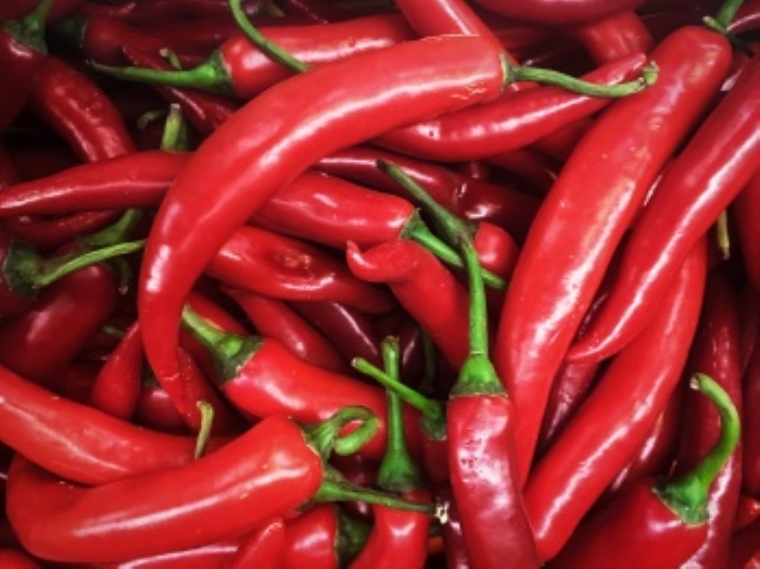 goat  pepper แปลว่า พริกชี้ฟ้า
