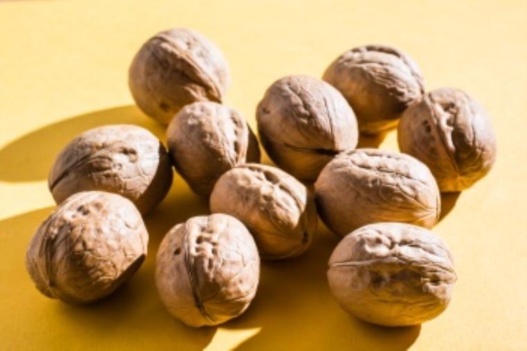walnut แปลว่า ต้นหรือผลวอลนัท