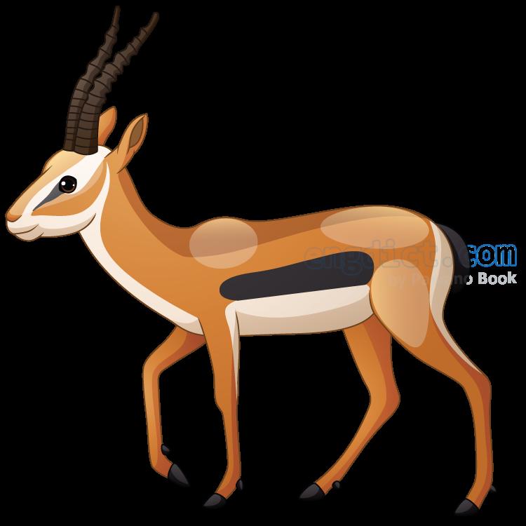 antelope แปลว่า ละมั่ง