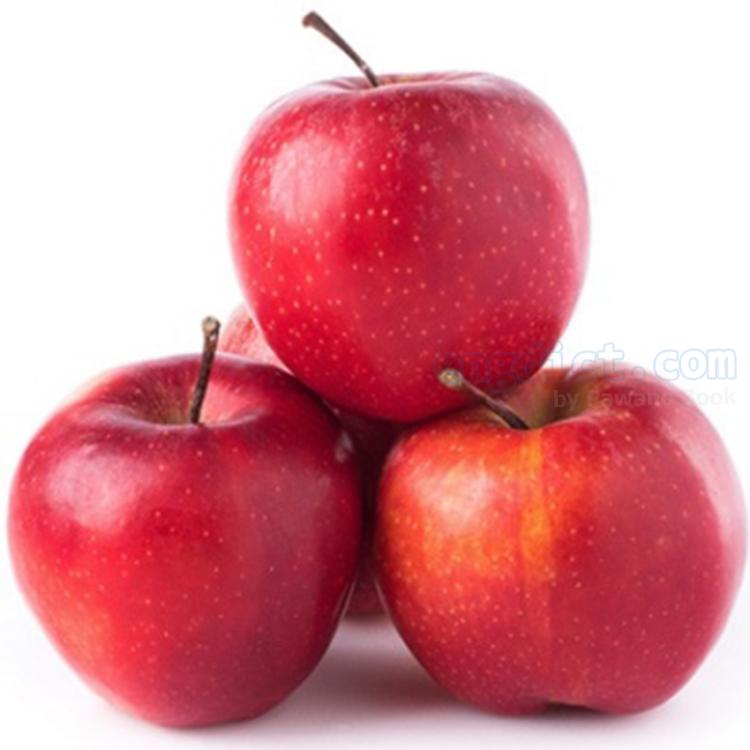 apple แปลว่า แอปเปิ้ล