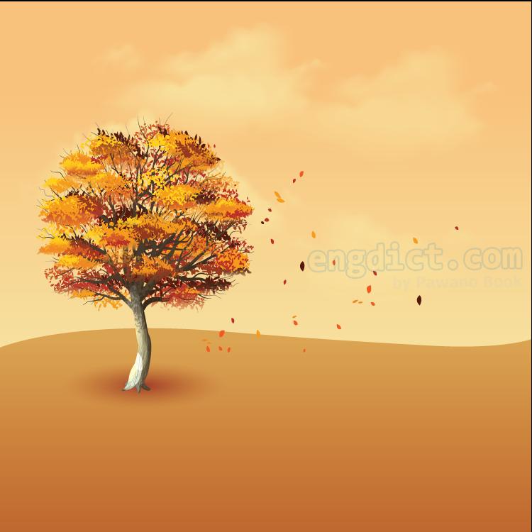 autumn แปลว่า ฤดูใบไม้ร่วง