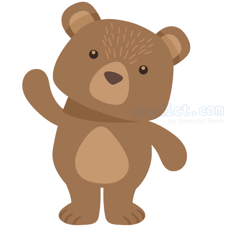 bear แปลว่า หมี