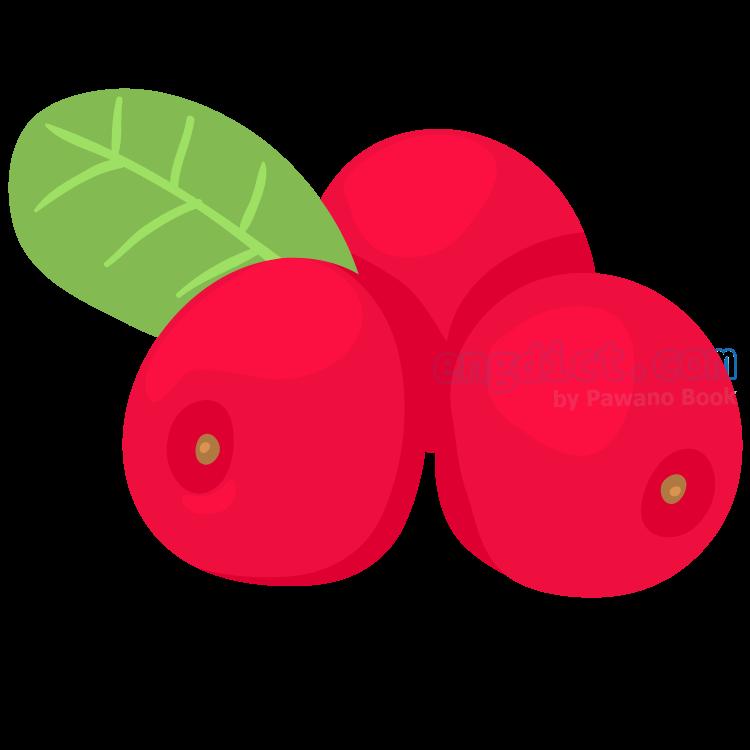 bearberry แปลว่า แบเบอร์รี่