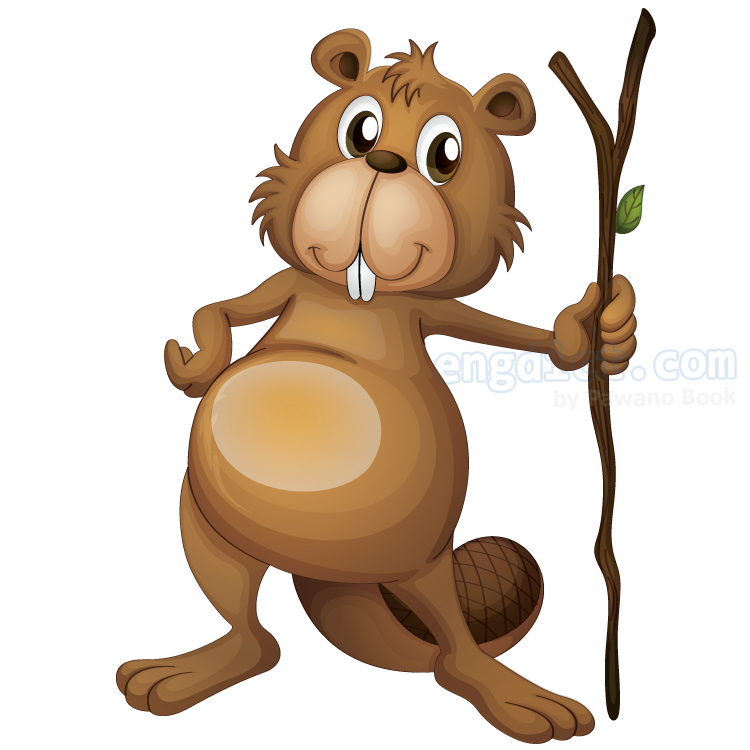 beaver แปลว่า ตัวบีเวอร์