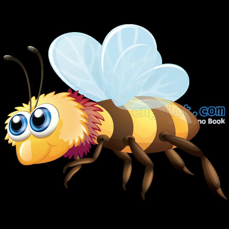 bee แปลว่า ผึ้ง