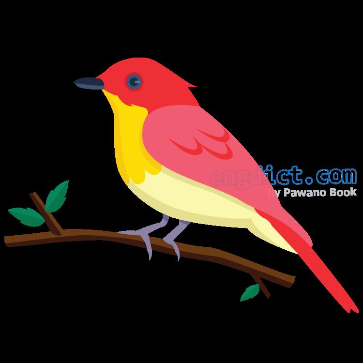 bird แปลว่า นก