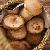 black mushroom แปลว่า เห็ดหอม