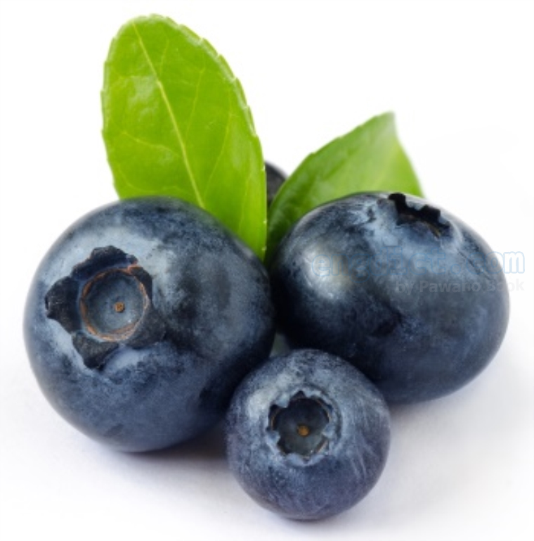 blueberry แปลว่า ผลบลูเบอร์รี่