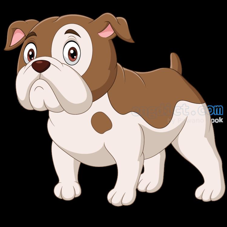 bulldog แปลว่า สุนัขพันธุ์บุลด็อก