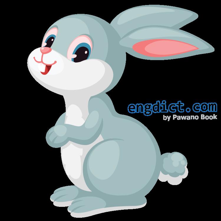 bunny แปลว่า ลูกกระต่าย