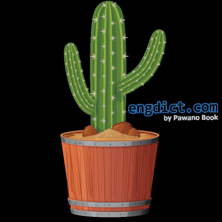 cactus แปลว่า กระบองเพชร
