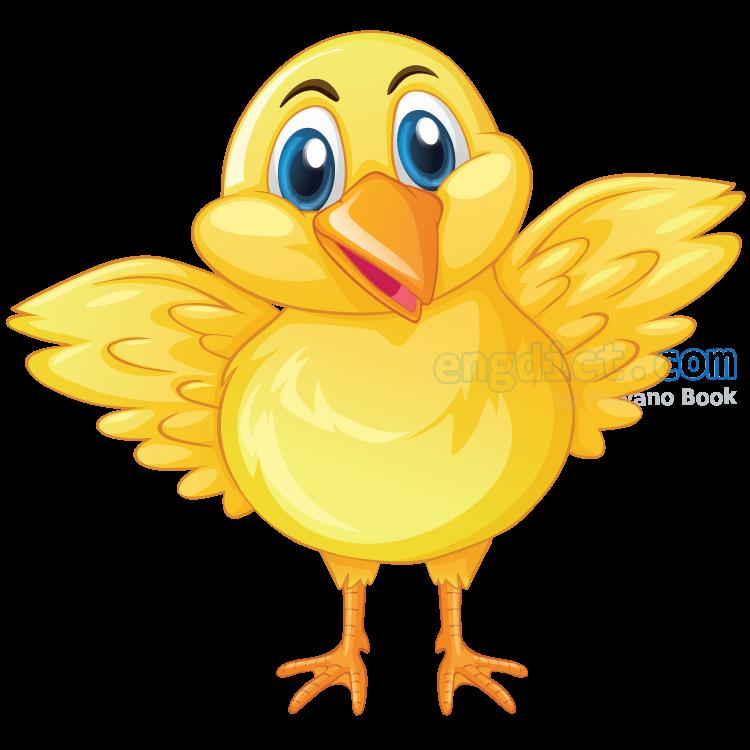 chick แปลว่า ลูกไก่