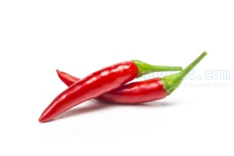 chili แปลว่า พริก