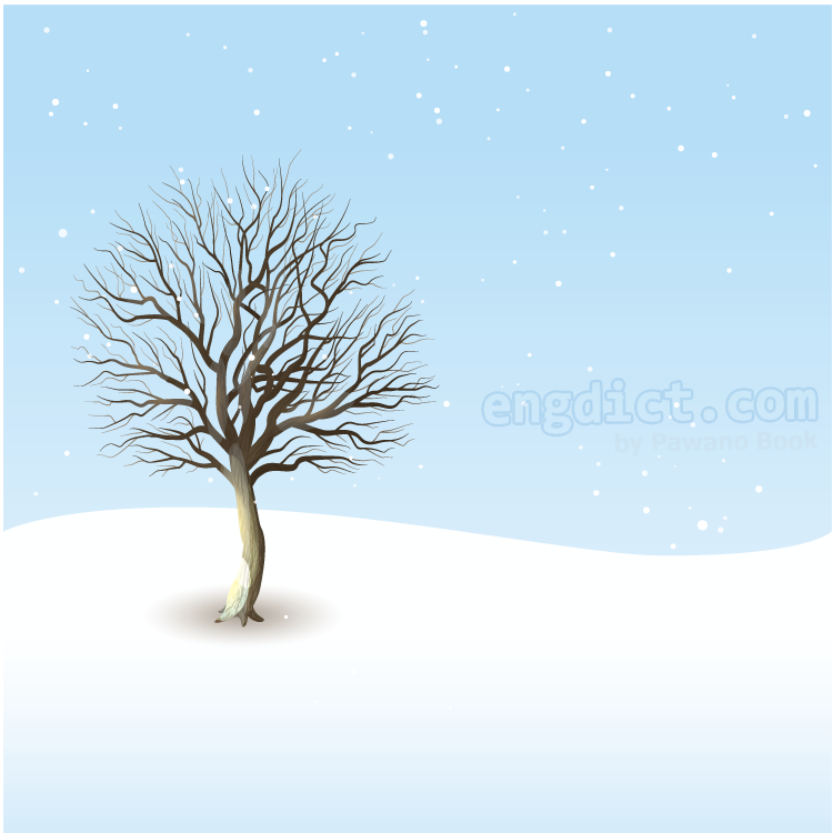 cold season แปลว่า ฤดูหนาว