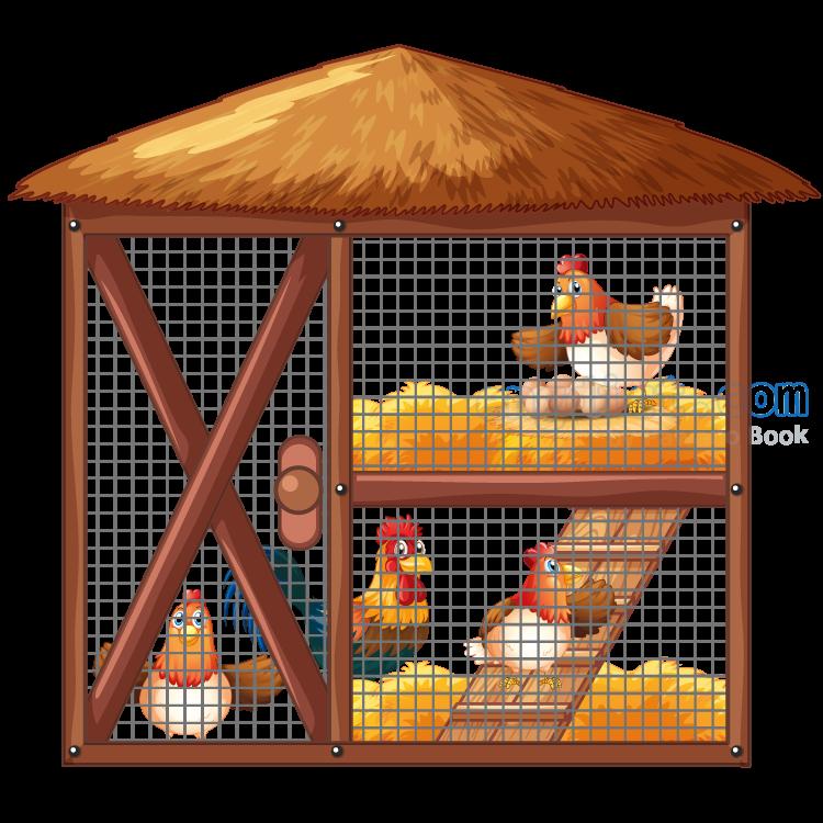 coop แปลว่า เล้าไก่