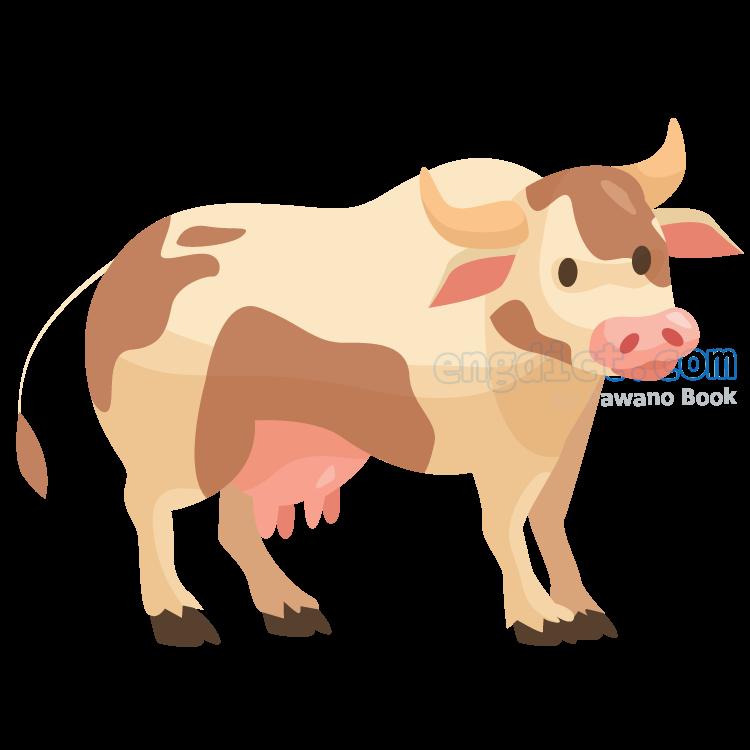 cow แปลว่า วัวตัวเมีย