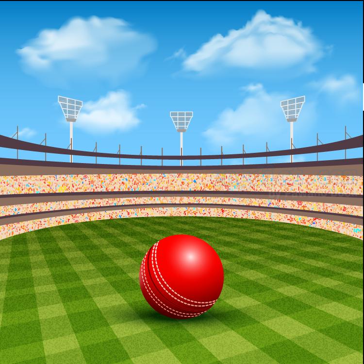 cricket court แปลว่า สนามกีฬาคริคเคท