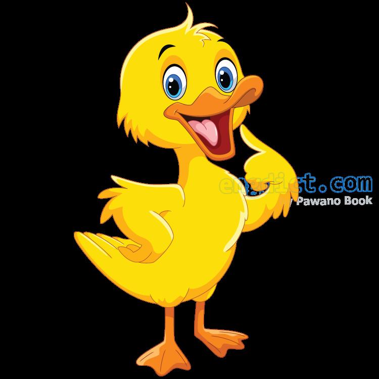 duckling แปลว่า ลูกเป็ด