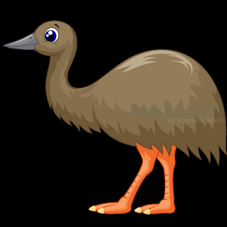 emu แปลว่า นกอีมู