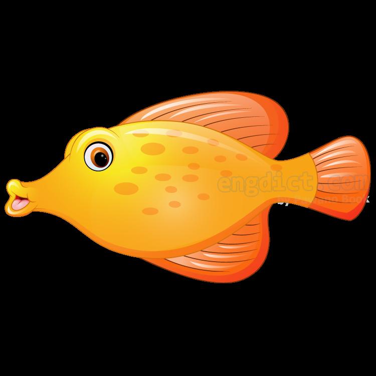 fish แปลว่า ปลา