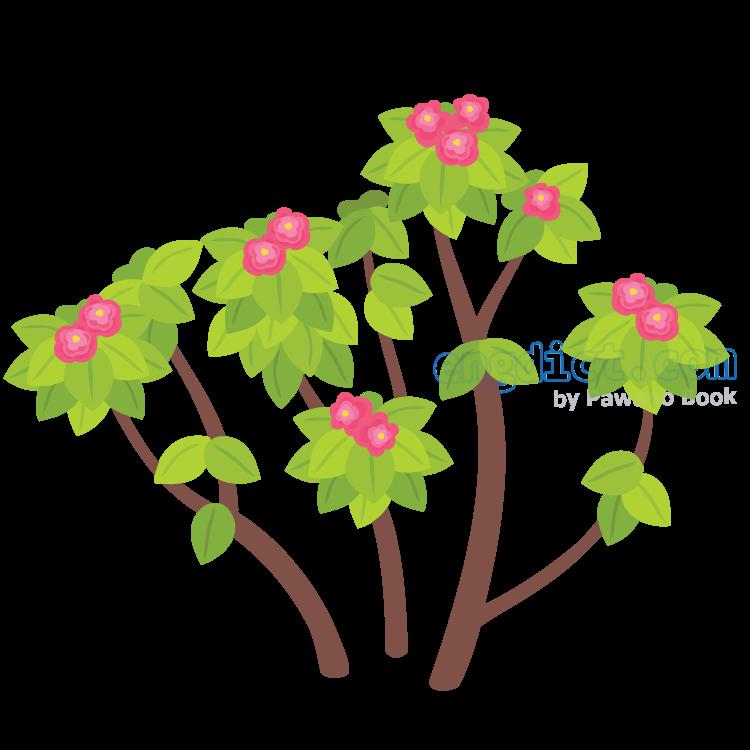 flowerer แปลว่า ไม้ดอก