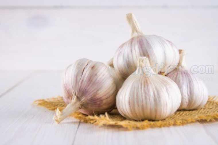 garlic แปลว่า กระเทียม