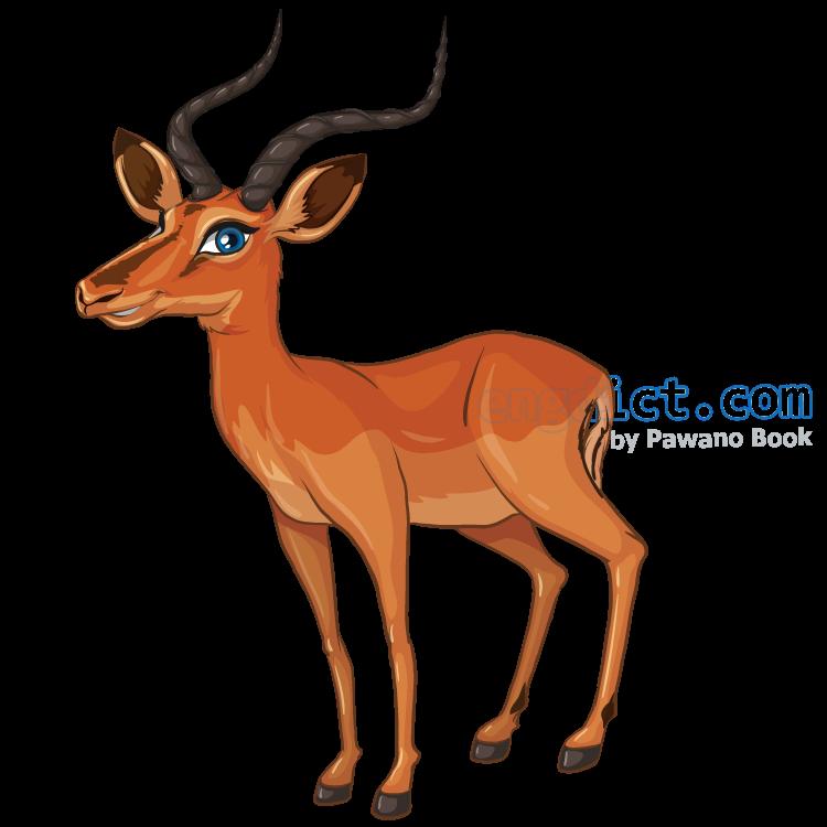 gazelle แปลว่า ละมั่ง