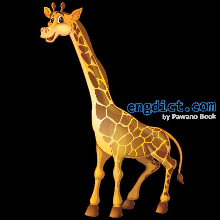 giraffe แปลว่า ยีราฟ