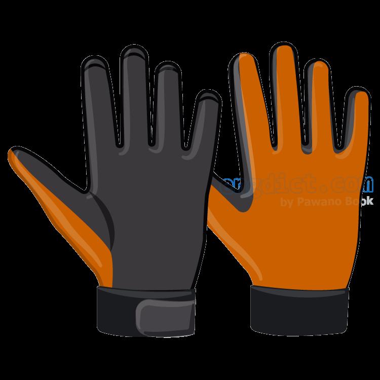 glove แปลว่า ถุงมือ