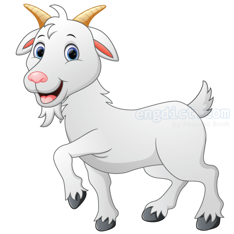 goat แปลว่า แพะ