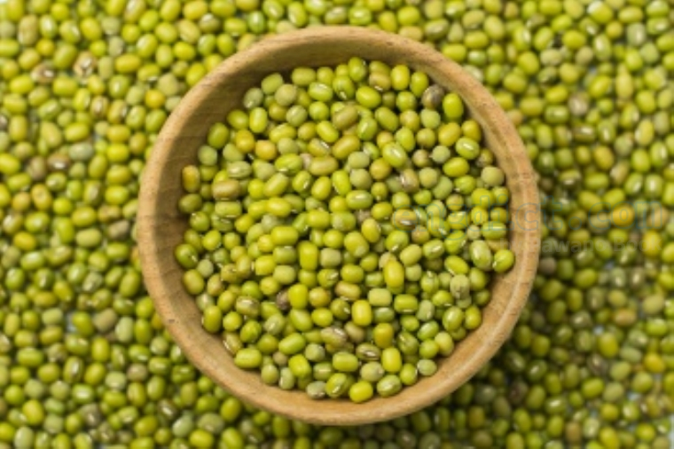 green bean แปลว่า ถั่วเขียว