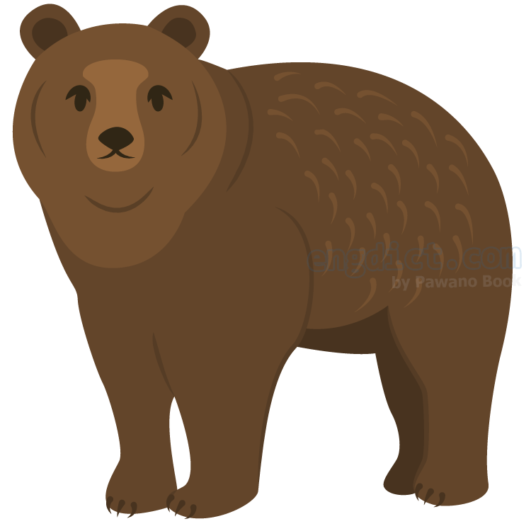 grizzly bear แปลว่า หมีกริซลี