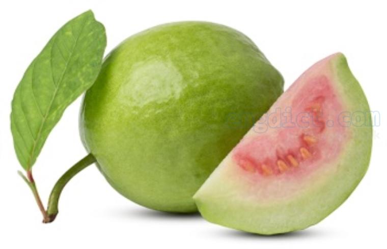 guava แปลว่า ฝรั่ง