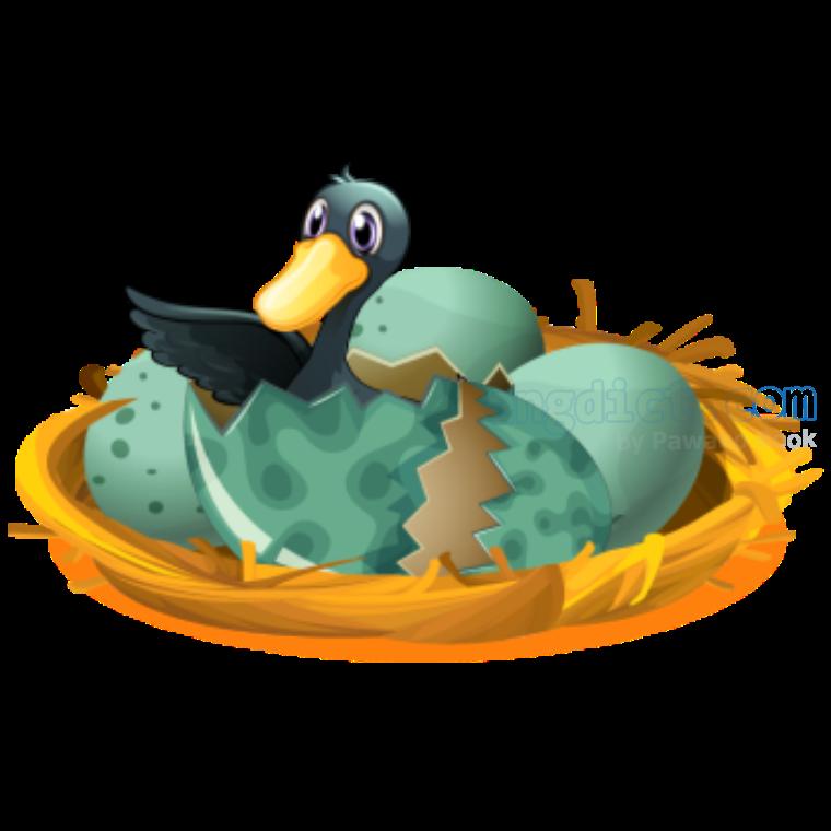 hatch แปลว่า ฟักไข่