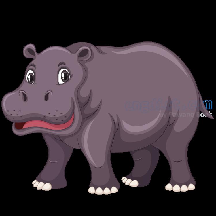 hippopotamus แปลว่า ฮิบโป