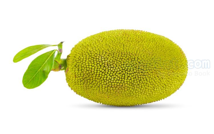 jackfruit แปลว่า ขนุน