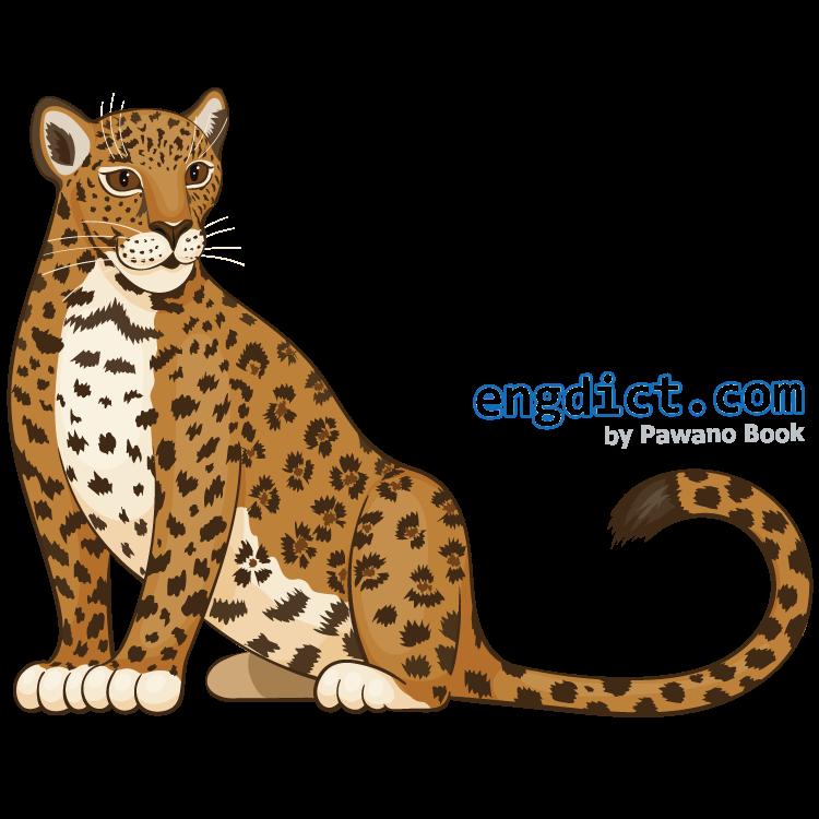 jaguar แปลว่า เสือจากัวร์