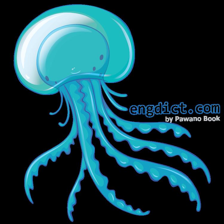 jellyfish แปลว่า แมงกะพรุน