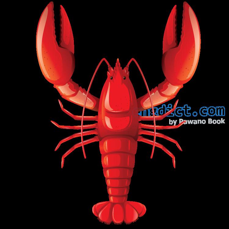 lobster แปลว่า กุ้งทะเลขนาดใหญ่