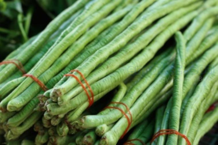 long bean แปลว่า ถั่วฝักยาว