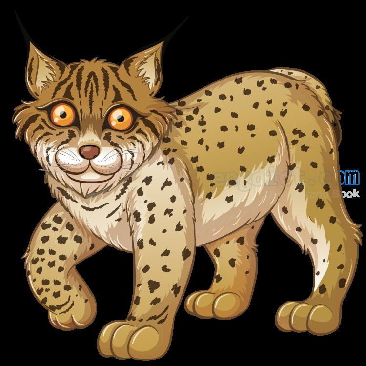 lynx แปลว่า แมวป่า