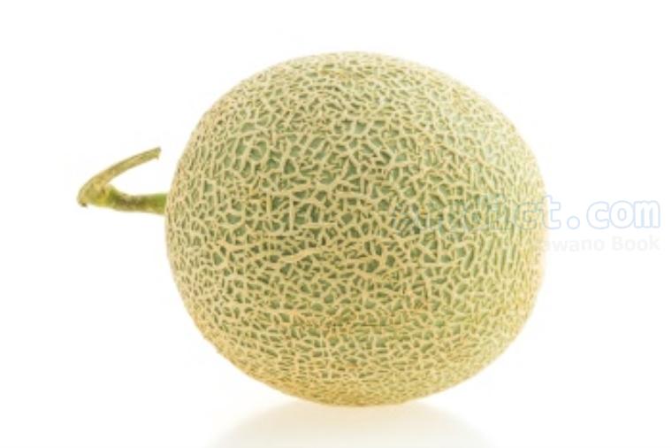 melon แปลว่า เมลอน