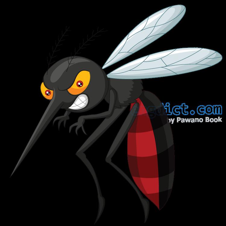 mosquito แปลว่า ยุง