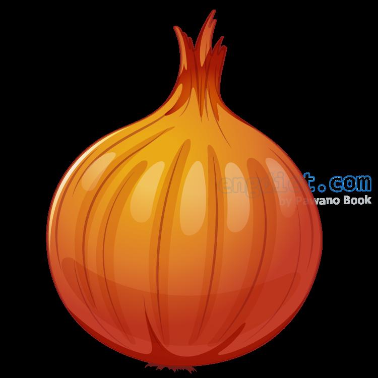 onion แปลว่า หอมหัวใหญ่