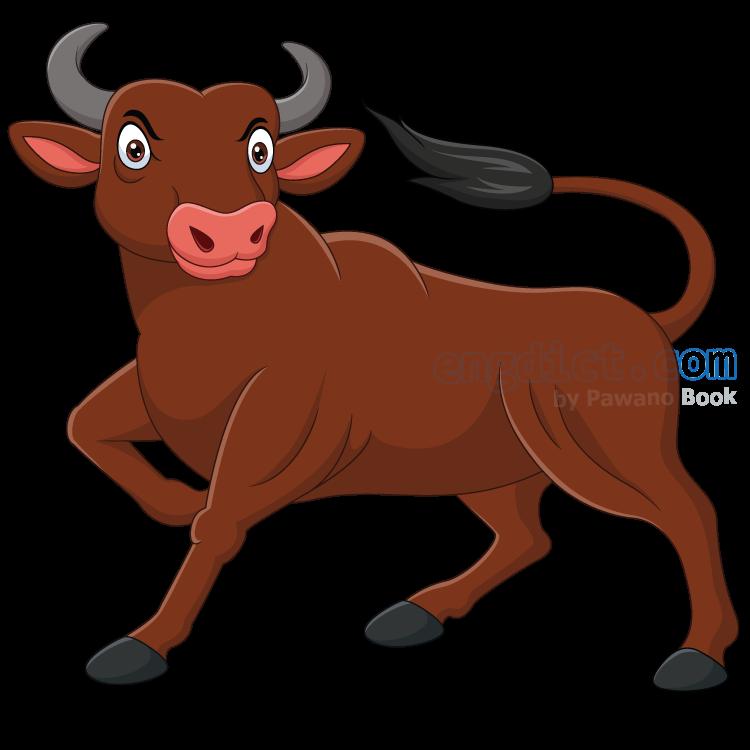 ox แปลว่า วัวตัวผู้
