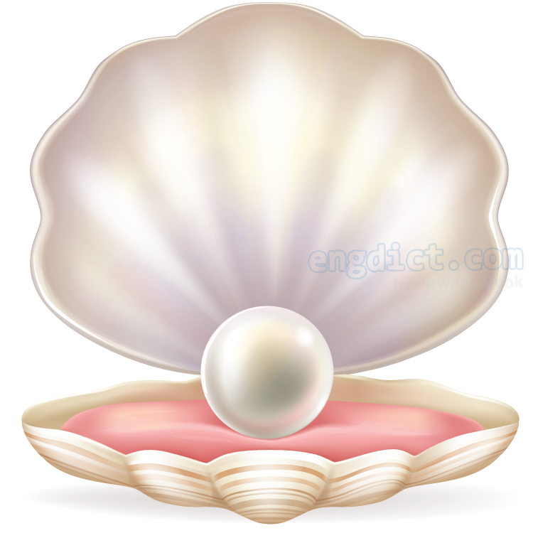 pearl แปลว่า หอยไข่มุก