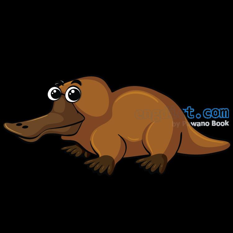 platypus แปลว่า ตุ่นปากเป็ด