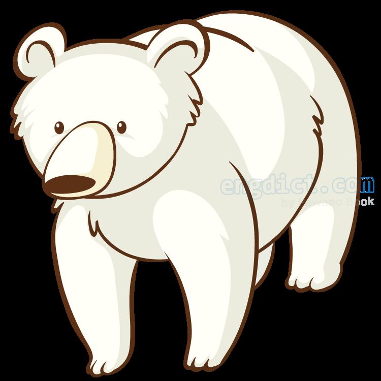 polar bear แปลว่า หมีขาวขั้วโลก