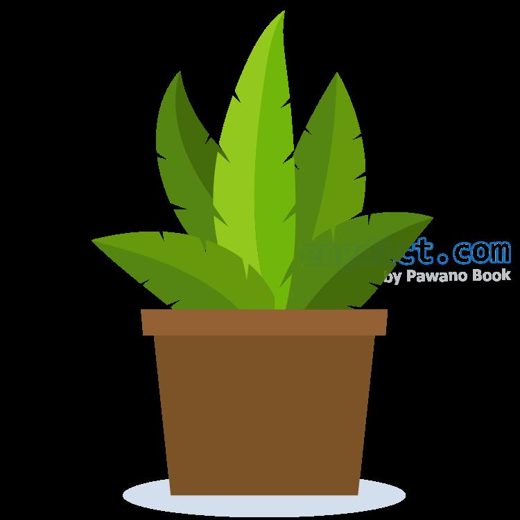 pot plant แปลว่า พืชกระถาง