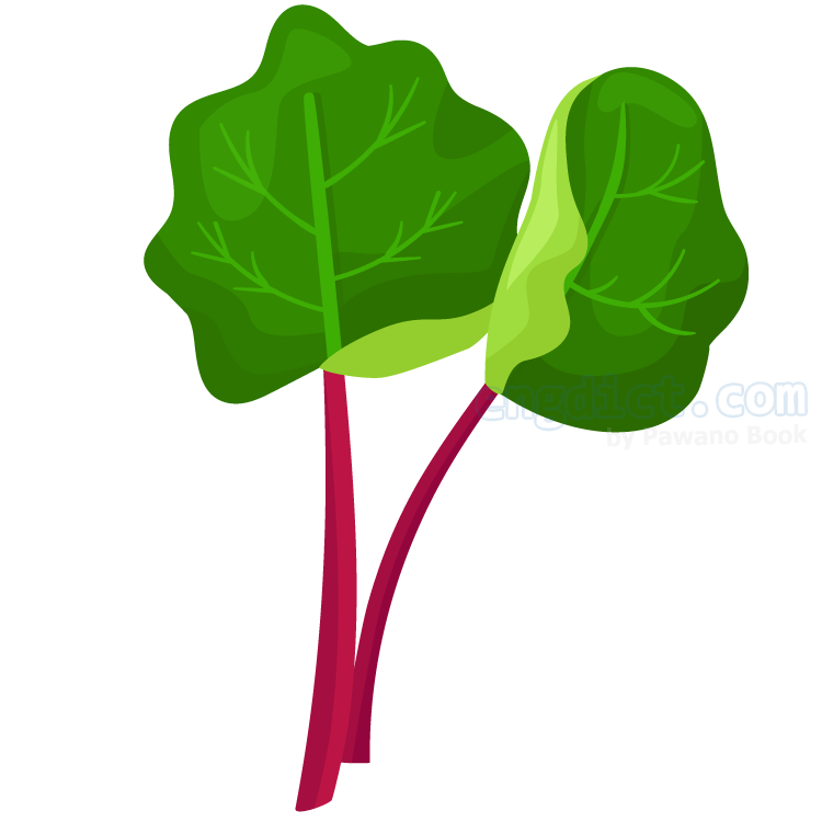 rhubarb แปลว่า พืชจำพวก Rheum ลำต้นอ่อนกินได้ใบมีพิษ